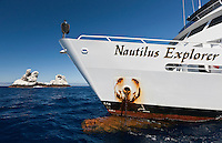 RM1175-D. Nautilus Explorer, luxury live-aboard dive boat, in front of world famous dive site Roca Partida in the Socorro Islands. Baja, Mexico, Pacific Ocean<br /> Photo Copyright &copy; Brandon Cole. All rights reserved worldwide.  www.brandoncole.com