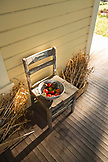 USA, Oregon, Willamette Valley, a bowl of tomatoes next to the front door at Big Table Farms Vineyard, Gaston