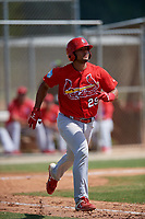 St. Louis Cardinals Ivan Herrera (29) during a Minor League Spring Training Intrasquad game on March 28, 2019 at the Roger Dean Stadium Complex in Jupiter, Florida.  (Mike Janes/Four Seam Images)