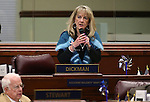 Nevada Assemblywoman Jill Dickman, R-Sparks, speaks on the Assembly floor at the Legislative Building in Carson City, Nev., on Wednesday, April 1, 2015. <br /> Photo by Cathleen Allison