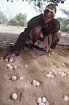 Ajua - the worlds'  oldest board game  played  by the  Turkana  in Northern Kenya...
