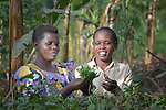 Annett Nakamya (left) and Regina Baagala inspect plants in Nakamya's garden in Kabulasoke, Uganda, where the Ntulume Village Women Development Association has trained women in improved agricultural practices, thus increasing food security and empowering women and children. The project was supported by funding from the Call to Prayer and Self-Denial of United Methodist Women. Baagala is staff of NVIWODA.