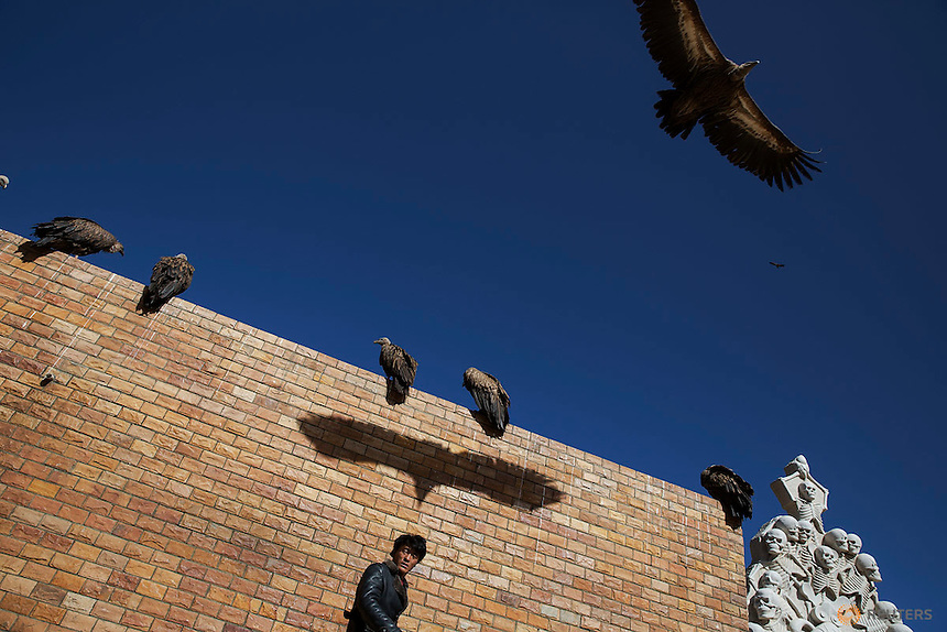 "A vulture casts a shadow over a man who attended a sky burial near the Larung valley located some 3700 to 4000 metres above the sea level in Sertar county, Garze Tibetan Autonomous Prefecture, Sichuan province, China November 1, 2015. In early afternoons, on a hill near famous Larung Wuming Buddhist Institute relatives and onlookers gather for sky burials in which bodies of deceased people are offered to vultures to prey upon it. Such burials are practiced by some Tibetans and Mongolian in China as an extreme type of Buddhist's ""self-sacrifice almsgiving"". It is believed that feeding vultures with decomposed corpse of relatives on top of a mountain is a respectful to pay tribute to their passed-away beloved ones. Picture taken November 1, 2015.  REUTERS/Damir Sagolj"