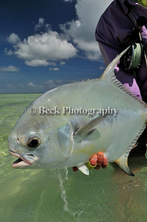 Saltwater fly fishing in Los Roques Venezuela