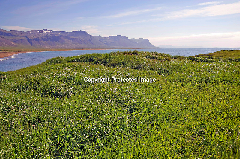 View of Lava Field and Budavik Bay in the Former Fishing Village of Budir in West Iceland