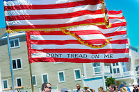 A collection of flat is carried during the Independence Parade Saturday July 2, 2016 on Beach Avenue in Cape May, New Jersey. Photo by William Thomas Cain/Cain Images