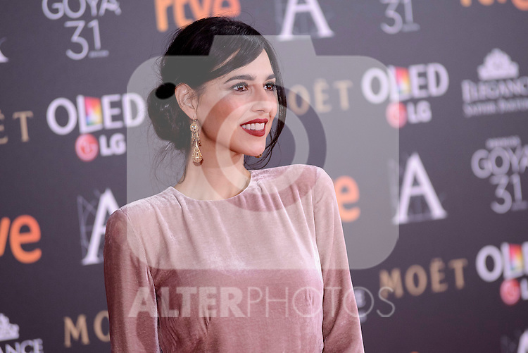 Cristina Brondo attends to the Red Carpet of the Goya Awards 2017 at Madrid Marriott Auditorium Hotel in Madrid, Spain. February 04, 2017. (ALTERPHOTOS/BorjaB.Hojas)