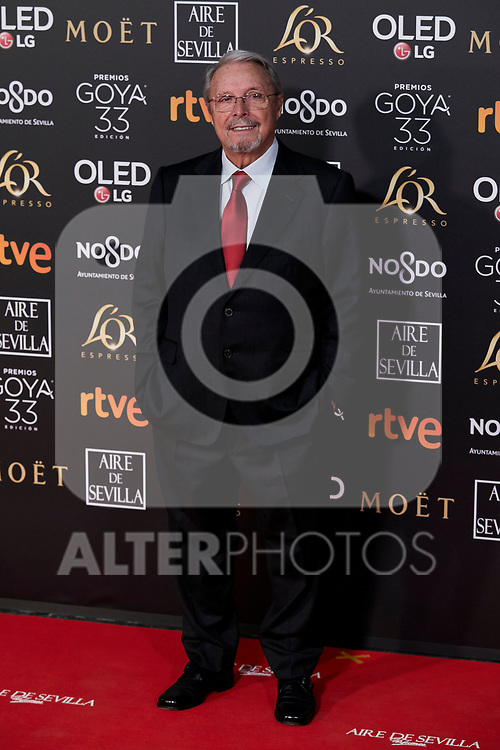 Benjamin Fernandez attends to 33rd Goya Awards at Fibes - Conference and Exhibition  in Seville, Spain. February 02, 2019. (ALTERPHOTOS/A. Perez Meca)