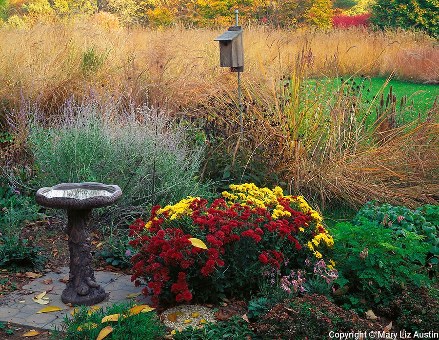 Bureau, County, IL<br /> Birdbath and garden of fall flowers at the edge of a tall grass prairie