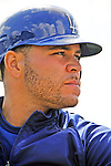 15 March 2008: Los Angeles Dodgers' catcher Russell Martin warms up prior to a Spring Training game against the Washington Nationals at Space Coast Stadium, in Viera, Florida...Mandatory Photo Credit: Ed Wolfstein Photo