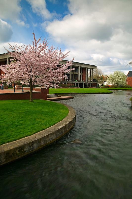 Stream in Willamette University, Salem, Oregon