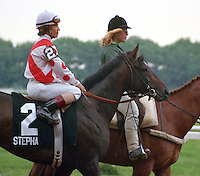 Stephans Odyssey, Laffit Pincay up, before 1985 Belmont Stakes