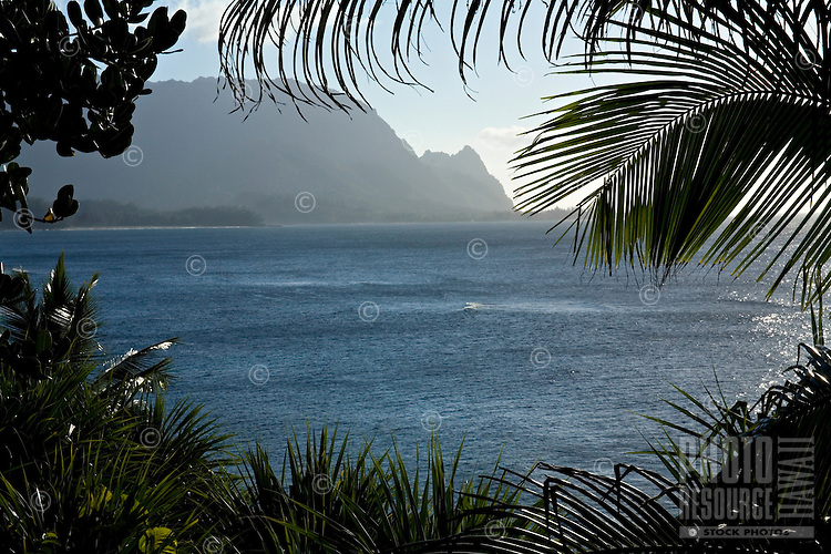 View of Bali Hai Point through foliage from Princeville, Kauai