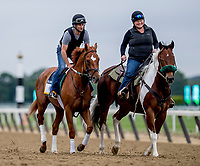 ELMONT, NY - JUNE 07: Hofburg is ponied around the track as horses prepare Thursday for the 150th running of the Belmont Stakes at Belmont Park on June 7, 2018 in Elmont, New York. (Photo by Scott Serio/Eclipse Sportswire/Getty Images)