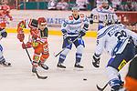 13.02.2018, Kunsteisstadion im Sahnpark, Crimmitschau, GER, DEL 2, Eispiraten Crimmitschau vs. SC Riessersee, im Bild<br /> <br /> <br /> Patrick Pohl (#28, Eispiraten Crimmitschau),  Richard Mueller (#61, SC Riessersee), Louke Oakley (#19, SC Riessersee), Joel Johansson (#29, SC Riessersee),  <br /> <br /> Foto &copy; nordphoto / Dostmann