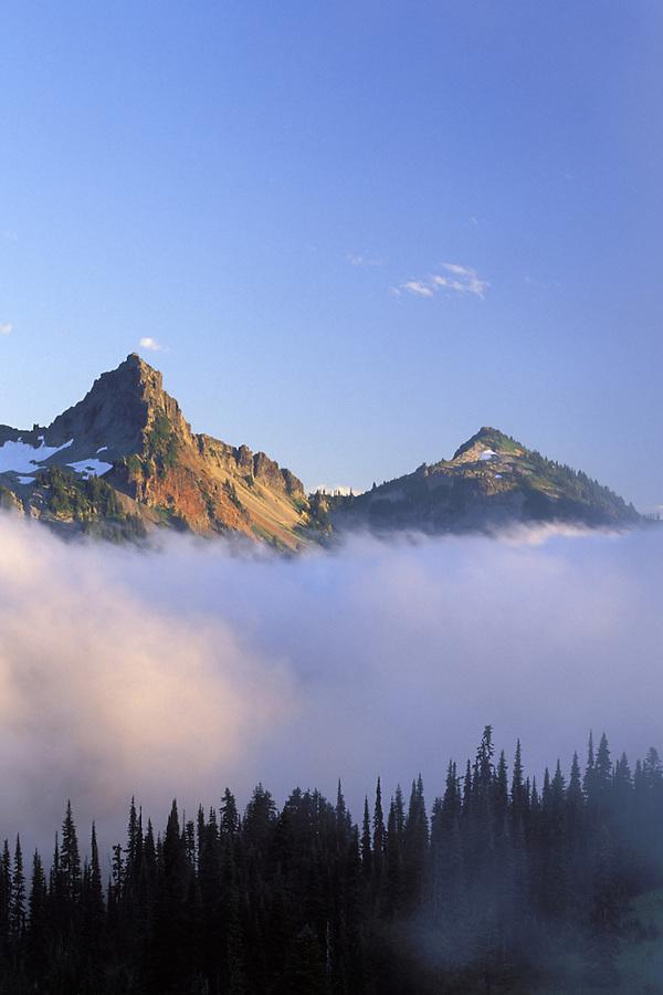 Pinnacle Peak and Plummer above trees silhouetted against fog, Paradise, Mount Rainier National Park, Washington