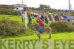 Colm Cournane on 'NAMA',  Winner of the donkey derby at the Cahersiveen Races on Sunday.