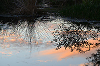 Sundown cloud reflections on  water at Green Cay Wetlands, Boynton Beach, Florida.