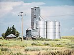 Grain elevators, Corral, Idaho.