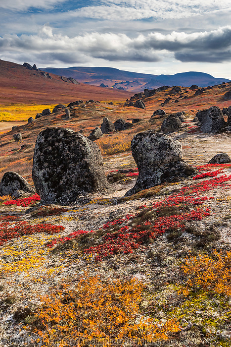 Granit tors dot the landscape in the Bering Land Bridge National Preserve, Seward Peninsula, Alaska.