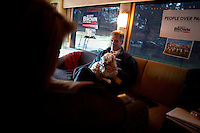 Senator Scott Brown (R-MA) holds his daughter Arianna's dog on his campaign bus between campaign stops in Framingham and Lowell, Massachusetts, USA, on Thurs., Nov. 2, 2012. Senator Scott Brown is seeking re-election to the Senate.  His opponent is Elizabeth Warren, a democrat.