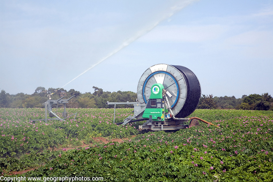 Water irrigation spraying watering potato field, Sutton, Suffolk, England