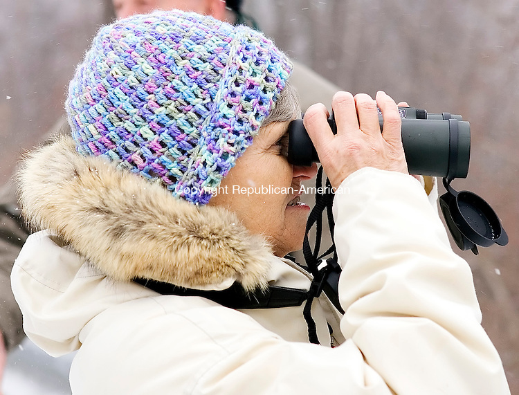 Goshen, CT-03, January 2010-010310CM05 --  Ronnie Santo of Torrington, attempts to locate birds in Goshen Sunday morning.  The study was part of the annual Christmas bird count from the Sharon Audubon Society in Falls Village.  Christopher Massa Republican-American