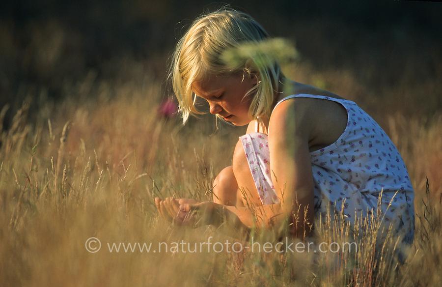 Mädchen, Kind fängt Heuschrecken auf einer Wiese, Heuschrecke
