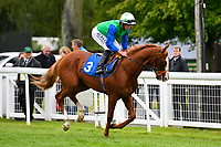 Top Buck ridden by Ryan Moore goes down to the start  of The First Carlton Novice Auction Stakes Div 2  during Evening Racing at Salisbury Racecourse on 11th June 2019