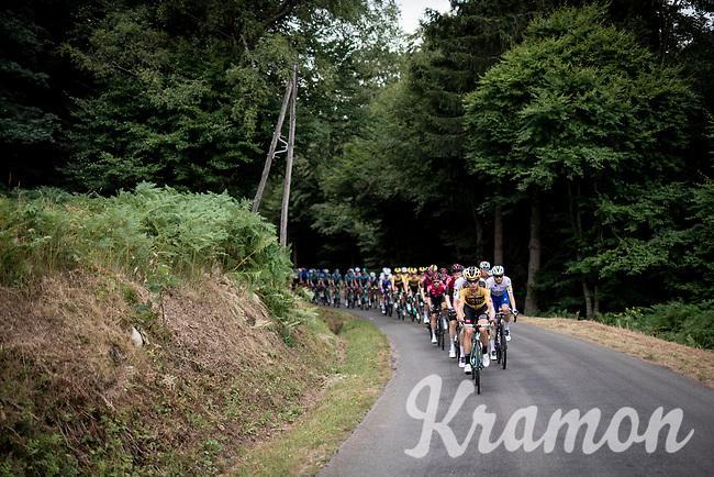 'Der Pantzerwagen' Tony Martin (DEU/Jumbo-Visma) doing his thing up front<br /> <br /> Stage 1: Clermont-Ferrand to Saint-Christo-en-Jarez (218km)<br /> 72st Critérium du Dauphiné 2020 (2.UWT)<br /> <br /> ©kramon