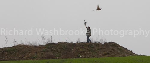 Copt Hall Farm Shoot  18th January 2012