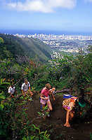 Hiking Waahila Ridge with a view of Honolulu, Oahu