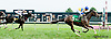Yuzura winning The Forever Together Stakes at Delaware Park on 9/12/13
