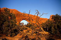 SOUTHWESTERN GEOLOGICAL FORMATIONS<br /> North Window Arch<br /> Arches National Park