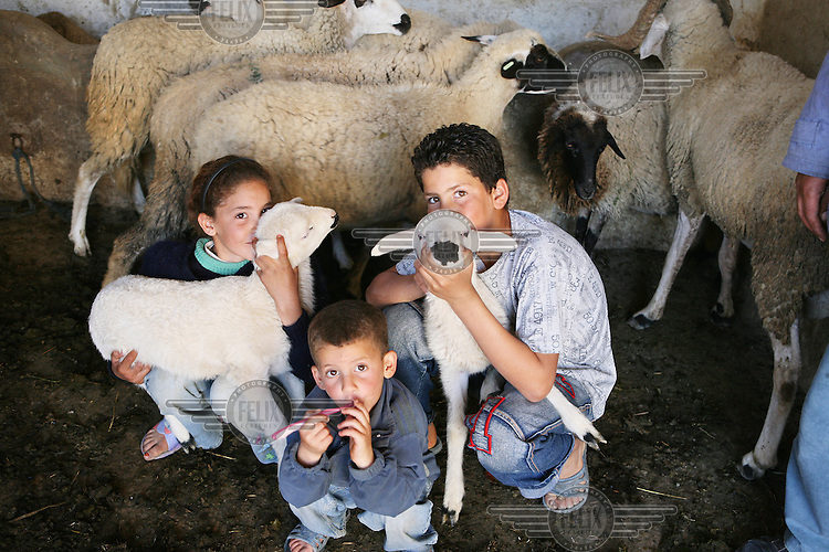 Children show off their lambs in their village of Tlaha.