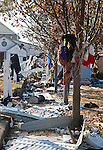Shredded clothing hangs on trees in in the yard of a home after the destruction from Superstorm Sandy on Brook Avenue in Union Beach, New Jersey.  Photo By Bill Denver