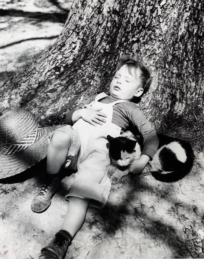 Young boy with cat asleep against tree. 1950's.