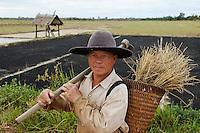 Laos, Vientiane province, farmer in front of paddy field with ash / Laos, Farmer vor einem Reisfeld das mit Asche geduengt wurde