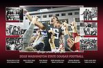 Commemorative print from the 2018 Washington State University football season, celebrating their 11-2 season, Alamo Bowl victory, GameDay visit and senior class!  Go Cougs!