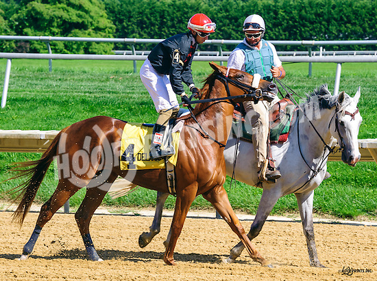 winning at Delaware Park on 8/4/16