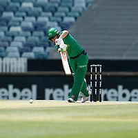 3rd November 2019; Western Australia Cricket Association Ground, Perth, Western Australia, Australia; Womens Big Bash League Cricket, Sydney Sixers verus Melbourne Stars; Elyse Villani of the Melbourne Stars plays forward during her innings - Editorial Use