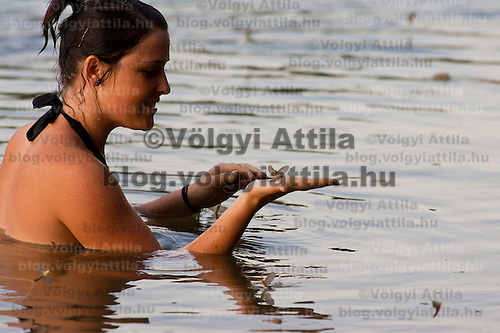 An onlooker takes a bath while the long-tailed mayfliy (Palingenia longicauda) swarming is in progress on the river Tisza in Tiszainoka (some 135 km south-east from Budapest), Hungary on June 12, 2011. ATTILA VOLGYI