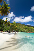 Snorkelers at Maho Bay<br /> Virgin Islands National Park<br /> St. John, U.S. Virgin Islands
