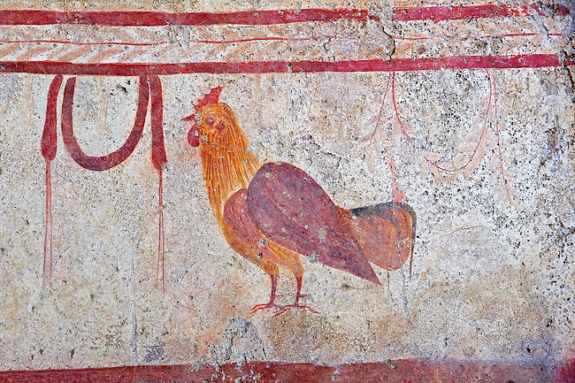 Lucanian fresco tomb painting of a cockerell. Pastrum 3rd Century BC