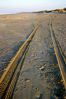 Tyre tracks on Piemanson Beach at sunset, Arles, Provence, France.