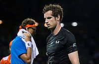 ANDY MURRAY (GBR)<br /> <br /> MIAMI OPEN, CRANDON PARK<br /> , KEY BISCAYNE, MIAMI, FLORIDA, USA<br /> <br /> &copy; AMN IMAGES