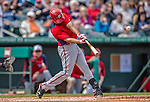 2 March 2013: Washington Nationals infielder Anthony Rendon hits a home run in the second inning of a Spring Training game against the St. Louis Cardinals at Roger Dean Stadium in Jupiter, Florida. The Nationals defeated the Cardinals 6-2 in their first meeting since the NLDS series in October of 2012. Mandatory Credit: Ed Wolfstein Photo *** RAW (NEF) Image File Available ***