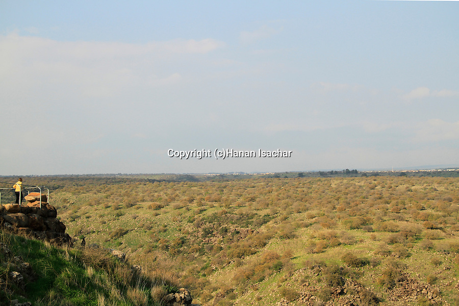 Golan Heights, Yehudiya Forest Nature Reserve