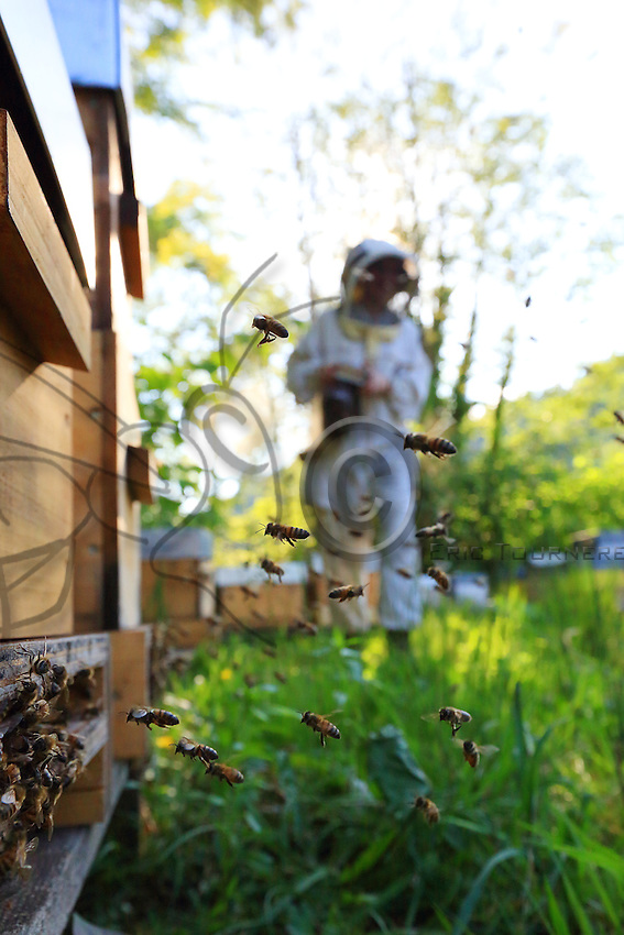 """Stephanie Rack, 28 years old, Thônes in Haute-Savoie.""""Last year, I produced 17 kilos of royal jelly and I found outlets for it in shops and through direct sales. The metro is today part of the past. I'm happy to get up in the morning to visit my hives.///Stéphanie Rack, 28 ans, Thônes en Haute-Savoie. L'année dernière, j'ai produit 17 kilos de gelée royale et j'ai trouvé des débouchés dans des boutiques et en vente directe. Le métro, c'est du passé, je suis heureuse de me lever pour visiter mes ruches."""