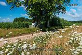 Marek, LANDSCAPES, LANDSCHAFTEN, PAISAJES, photos+++++,PLMP01046W,#L#, EVERYDAY